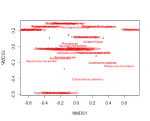 5 4 Multivariate analysis – Multidimensional scaling (MDS) – bioST@TS